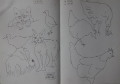 Croquis rapide animaux annick1.jpg