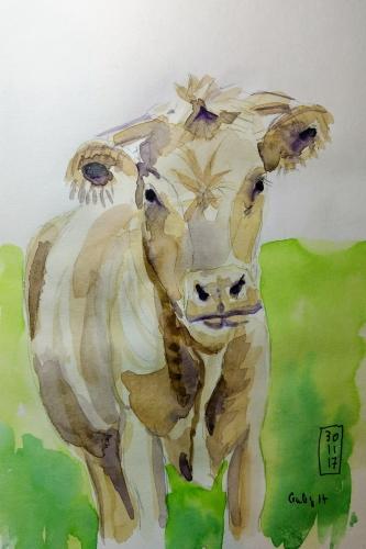 vache blanche.jpg