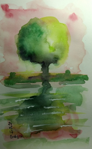 arbre boule .jpg