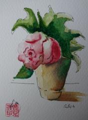 etegami rose olivia1.jpg