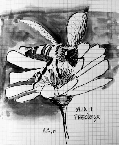 Ink 9.jpg