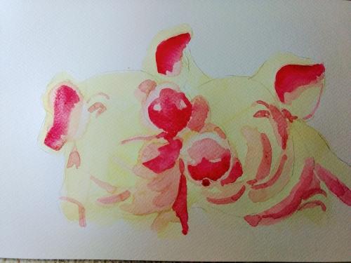 cochon progres 2.jpg