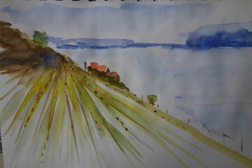 Stage aquarelle 2.JPG