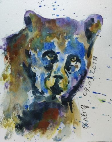 le livre ours.jpg