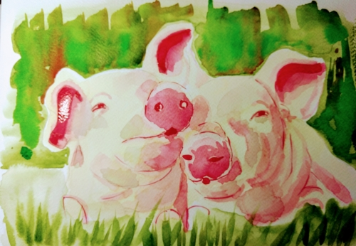 cochons progres 5.jpg
