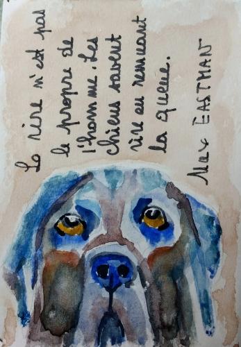 Petit livre chien 8.jpg