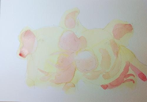cochons progres 1.jpg