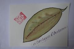 Carte VEROBIS.JPG